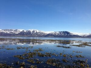 Eyjafjörder IJsland