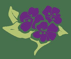 Purity Herbs Bloem Natuurlijke gezichtsverzorging