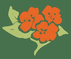 Purity Herbs logo natuurlijke babyverzorging