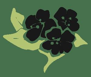 Purity Herbs Logo mannenverzorging